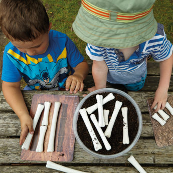 Children's dinosaur bones for matching and measuring activities at KS1