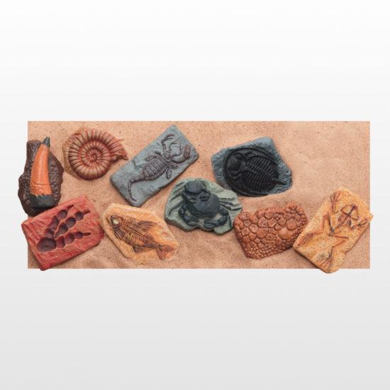 Ancient Fossils - set of 10 plastic fossils