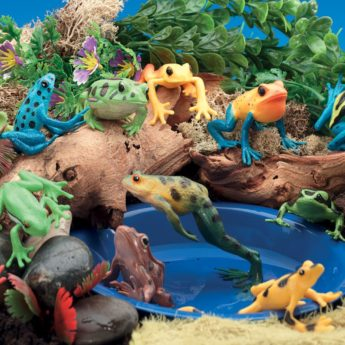 Set of 12 plastic frogs for small world and early maths.