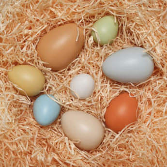 8 different-sized eggs ranging between 40-75mm high