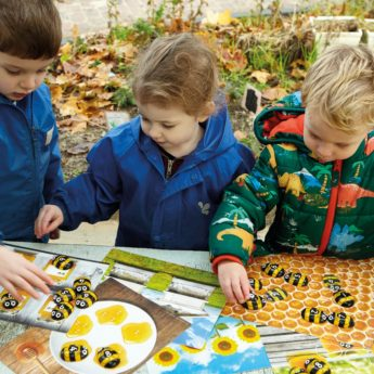 Explore early maths concepts with these durable Honey Bee stones and activity cards