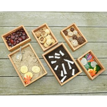 Set of 6 wooden investigation trays for use outdoors