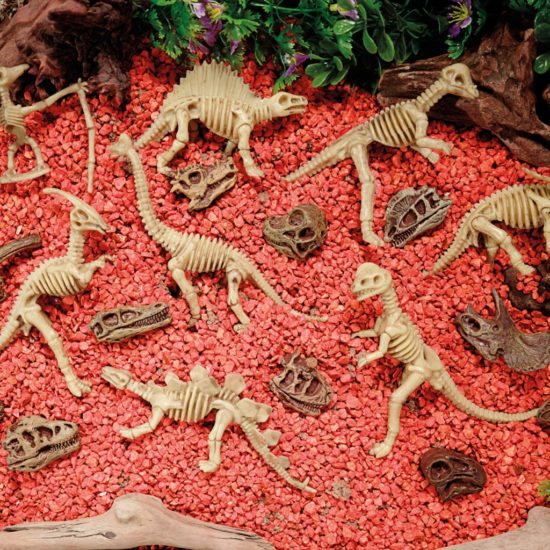 Dinosaur Skeletons add interest to jurassic small worlds!