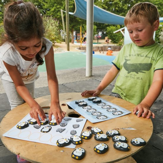 Learn pre-coding skills with these attractive penguin stones and activity cards