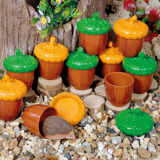 Set of 8 plastic discovery acorns with lids and activity guide