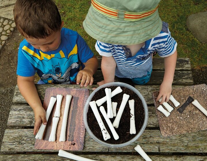 Dinosaur Bones Match and Measure